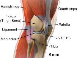 Car accident knee injuries