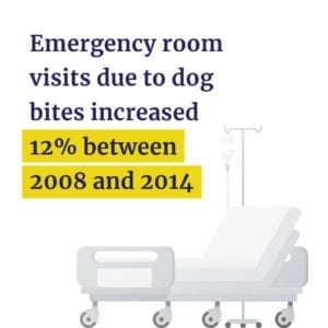 ER visits from dog bites increased 12% from 2008 - 2014