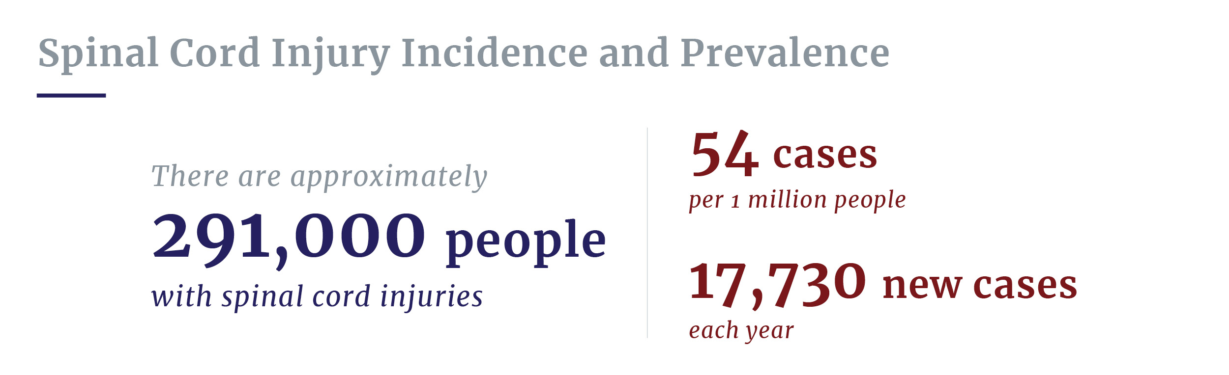 Spinal cord injury prevalence